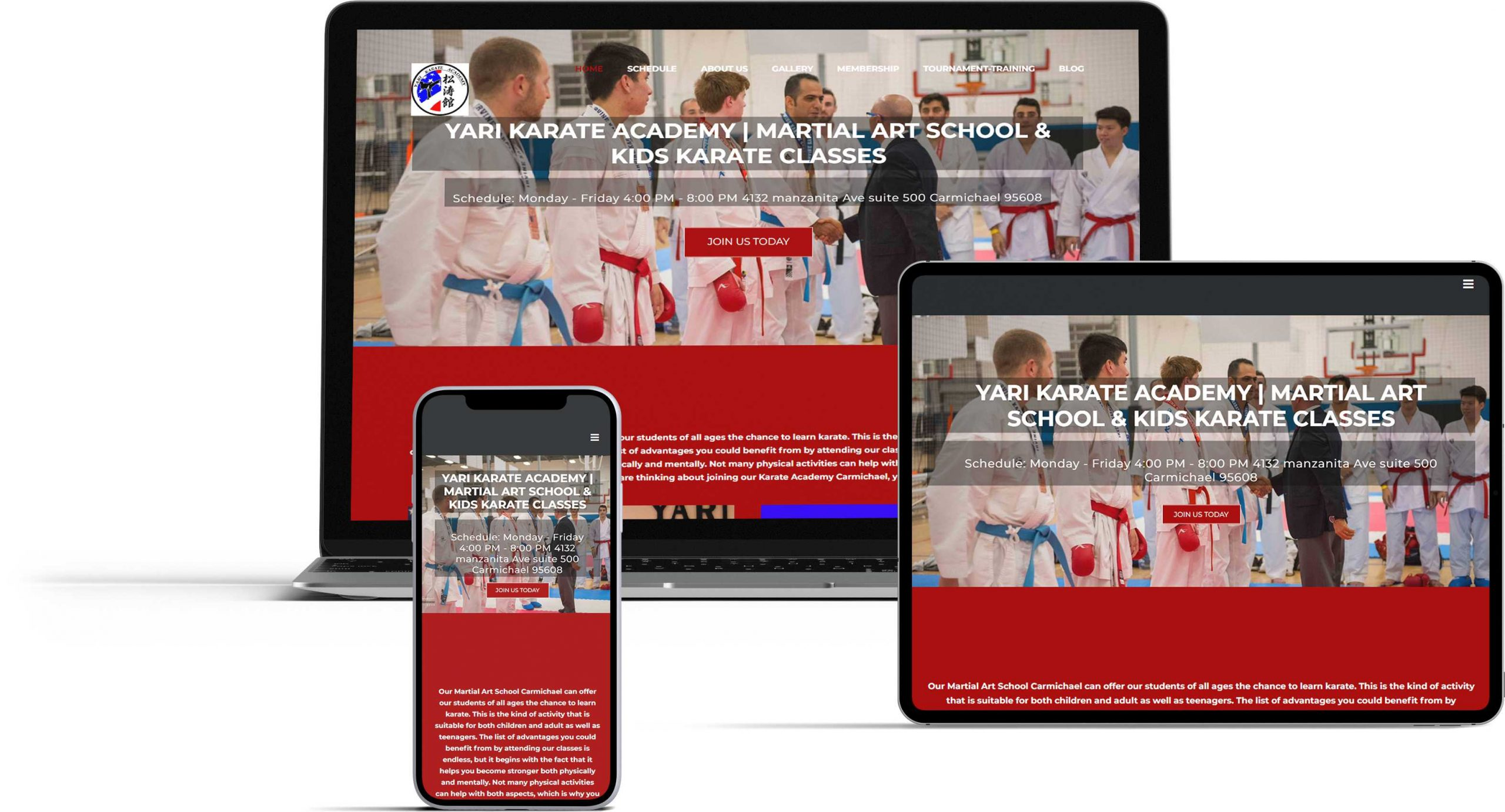 karate academy website